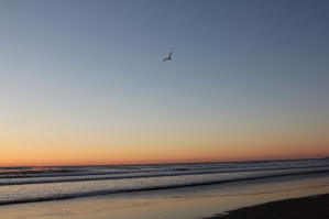 九十九里の海岸