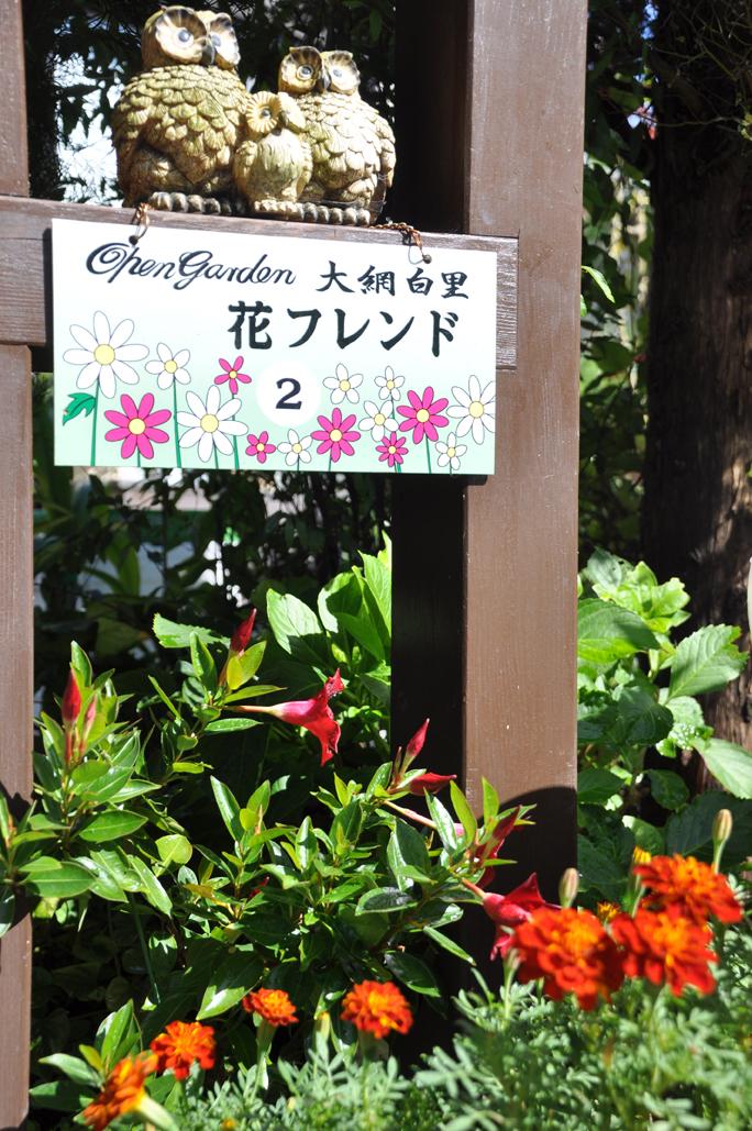 花フレンドタテDSC_0013